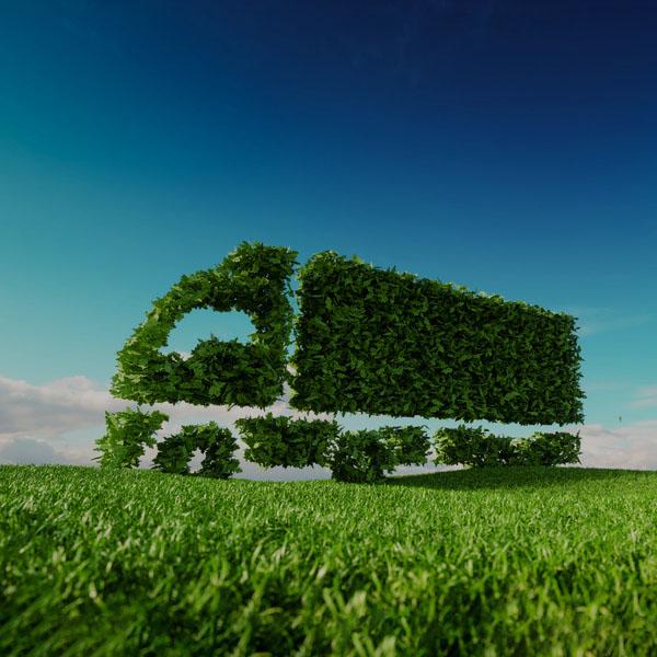 Naturbelassene Produkte - Umweltfreundlich