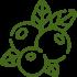 Naturbelassene Produkte - Oliven